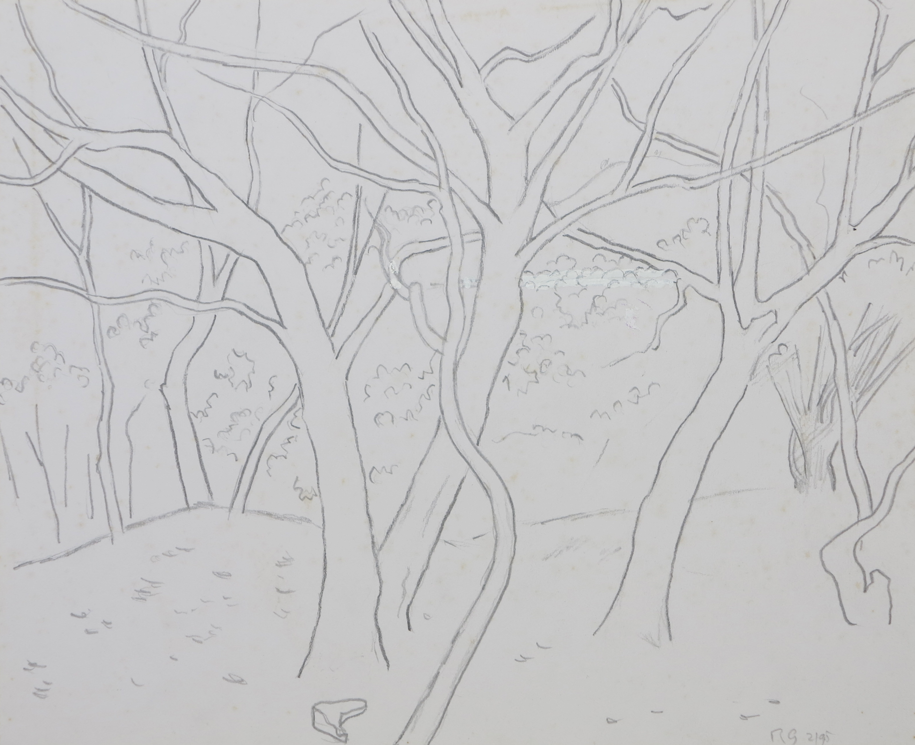 Group of trees, pencil