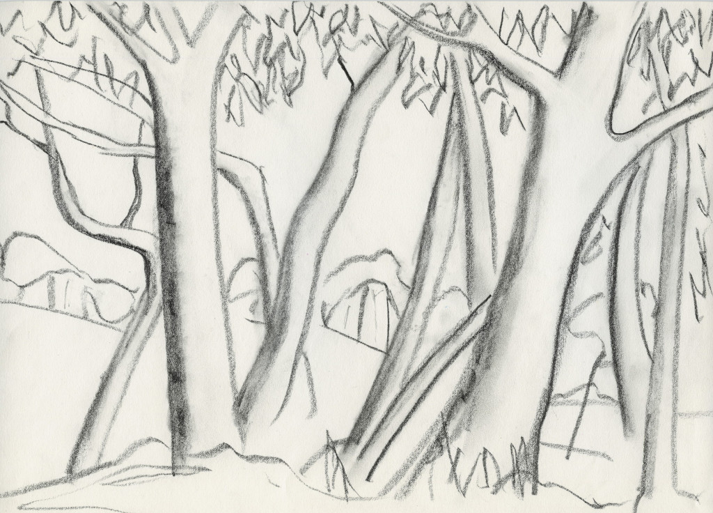 Towards Bathurst, charcoal