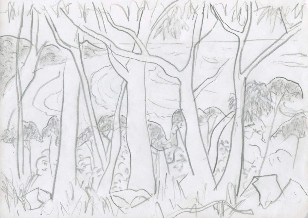 Surf through the trees, pencil
